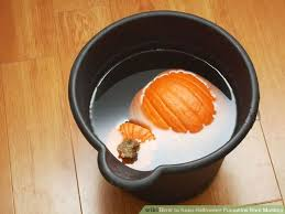 How To Make Halloween Pumpkins Last Longer - 239 best wikihow to halloween images on pinterest cupcake