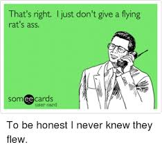 Rats Ass Meme - that s right just don t give a flying rat s ass ee cards user card