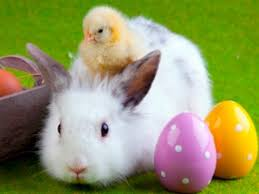 easter stuff 8 interesting facts about easter you probably didn t