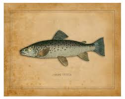 christmas gifts for fishing enthusiasts fly fishing gifts etsy