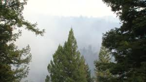 bear fire in santa cruz mountains marked by drone incident