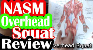 nasm oversquat review study guide by ryan youtube