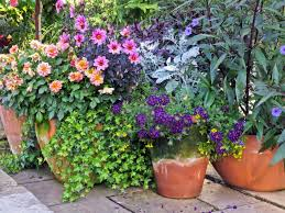 potted flowers wonderful flower planter ideas for patio 35 patio potted plant and