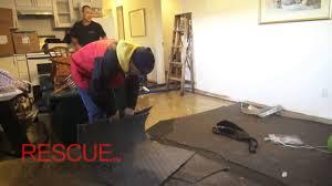Laminate Flooring Flood Damage Flood Damage Restoration Process Youtube