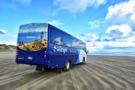 travel by bus images 10 reasons why bus travel is actually awesome in new zealand jpg
