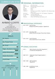 Formal Resume Template Best Modern Format Layout Curriculum Vitae Template Sample With