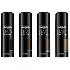 l oreal buy l oreal professional hair touch up 75ml free delivery