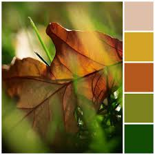 fall style guide for your home page 7
