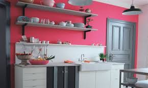 pink kitchen walls open kitchen shelves ideas for home garden