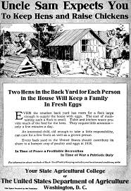 Backyard Chicken Raising by 218 Best Backyard Chickens Images On Pinterest Backyard Chickens
