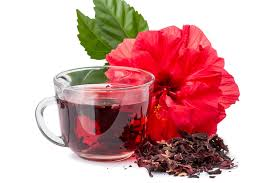 which state has a hibiscus hibiscus tea or extract may help lower cholesterol