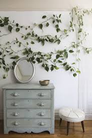 home accessories natural fresh house plants decoration homihomi