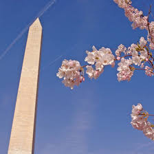 Washington travel with kids images Washington d c tours with kids usa today jpg