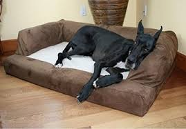 Sofa Bed For Dogs by Best Comfortable Dog Sofa Beds Your Dearly Pet Will Love