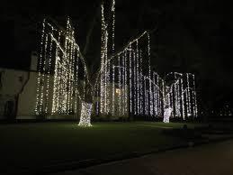 tanglewood lights 2015 paul