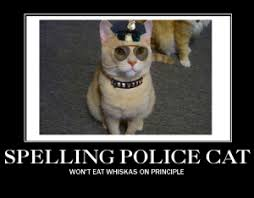 Spelling Police Meme - literacy privilege how i learned to check mine instead of making