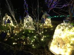 meadowlark s winter walk of lights our