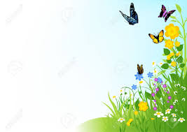 the butterfly and flower relaxing piano hd 1080p butterflies and