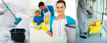 professional house cleaning services maintain a healthy home with