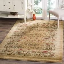Rugs 3x5 Paisley 3x5 4x6 Rugs Shop The Best Deals For Nov 2017