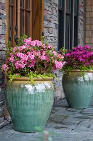 Potted Plant Ideas For Patio by 17 Best Images About Potted Plants On Pinterest Urban Garden