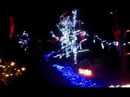 Bellevue Botanical Garden Lights Flowing River Garden D U0027lights At Bellevue Botanical Garden Youtube