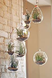 best 25 hanging terrarium ideas on pinterest copper decor