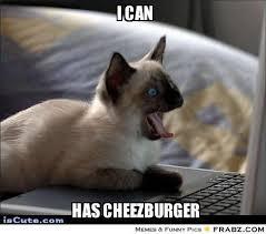Cheezburger Meme Creator - amazing i can haz meme generator i can haz suppookkuz conspiracy cat