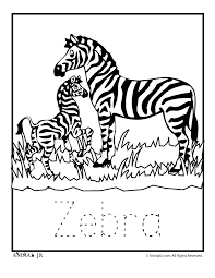 zoo animal coloring pages baby zebra woo jr kids activities