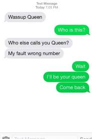 35 Hilarious Funny Texts Messages - the forgotten queen texts queens and funny texts