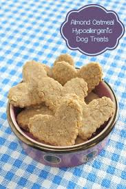 best 25 hypoallergenic dog treats ideas on pinterest