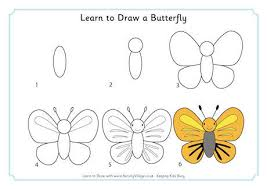 children can learn how to draw over 100 animals birds bugs and