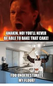 No Cake Meme - anakin no youll never be able to bake that cake
