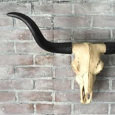 any color resin faux taxidermy longhorn skull wall hanging