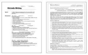 Sample Resume For Accounting Staff by Trainer Resume Example