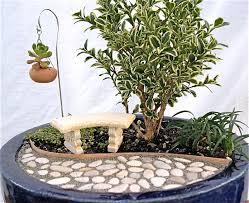 Small Indoor Trees by April 2011 The Mini Garden Guru From Twogreenthumbs Com