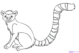 Free Coloring Pages Of Zoo Babies Baby Jungle Animal Woodland Woodland Animals Coloring Pages