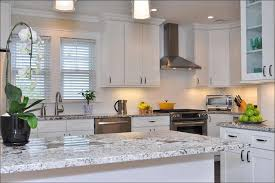 Should I Paint My Kitchen Cabinets White Kitchen Kitchen Trends Kitchen Paint Colors With Oak Cabinets
