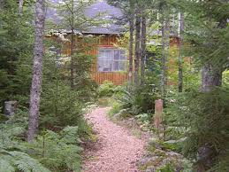 small cabin in the woods peaceful log cabin in the woods w view of vrbo