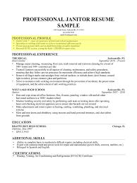 Summary Section Of Resume Download Sample Profile Summary For Resume Haadyaooverbayresort Com