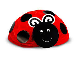 85 best party ideas images on pinterest ladybug party birthday