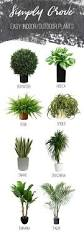 easy and stylish indoor outdoor plants simply grove