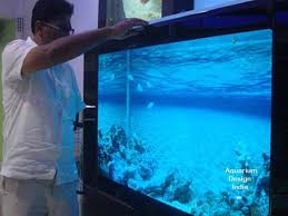 residential aquarium