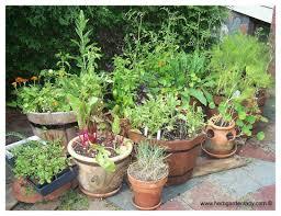container herb garden gardening ideas