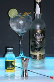 vodka tonic lemon 134 best gin tonic images on pinterest london dry gin bottle