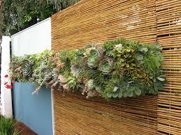 54 best green wall ideas images on pinterest succulents garden