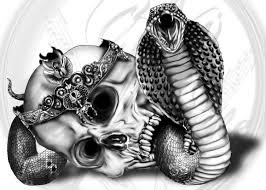 king cobra by yankeestyle94 on deviantart