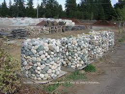 Rock For Landscaping by Large Landscape Rocks For Sale 5 Best Landscape Design Ideas
