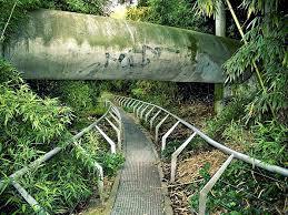 bureau des paysages alexandre chemetoff the bamboo garden parc de la villette designed by alexandre