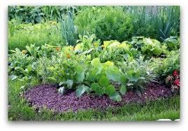 garden design garden design with vegetable garden fence design
